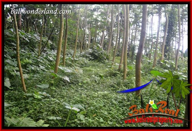 Land for sale in Bali, Land in Bali for sale, Property for sale in Bali, Property in Bali for sale, Property investment in Bali, Bali Property investment, Land for sale in Tabanan