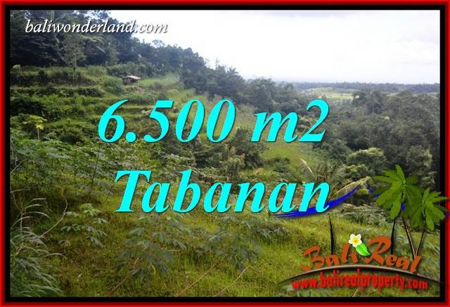 Magnificent Land sale in Tabanan Bali TJTB416