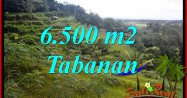 Affordable Property 6,500 m2 Land in Tabanan Penebel for sale TJTB416
