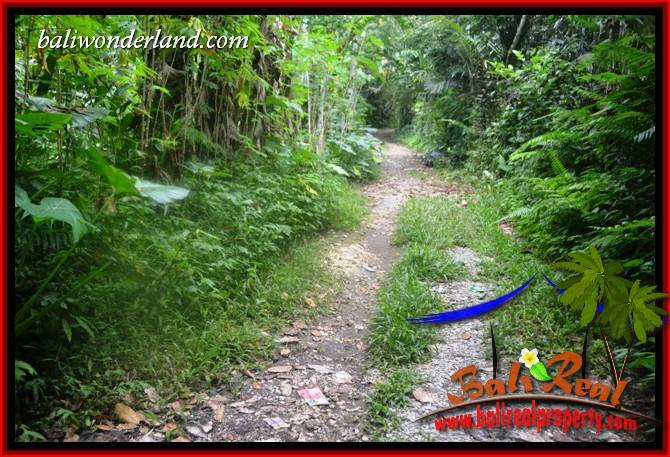 Magnificent Land in Tabanan for sale TJTB416