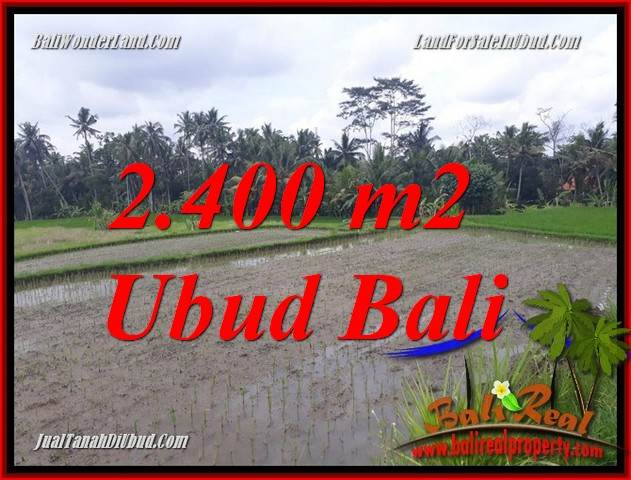 FOR sale Magnificent Land in Ubud Bali TJUB697