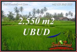 FOR sale Beautiful Property Land in Ubud TJUB700