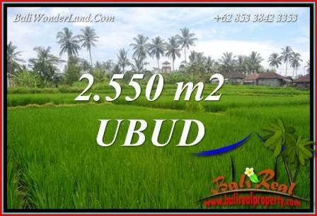 Magnificent Property Land sale in Ubud Bali TJUB700