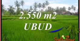 FOR sale Beautiful Property Land in Ubud TJUB700