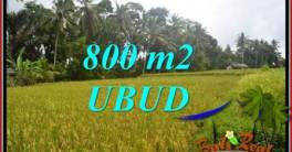 FOR sale Magnificent Property 800 m2 Land in Sentral Ubud TJUB707