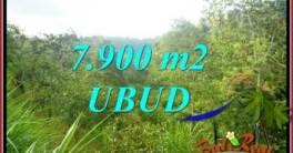 FOR sale Magnificent Land in Ubud TJUB729