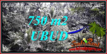 FOR sale Exotic Property 750 m2 Land in Ubud Tampak Siring Bali TJUB742