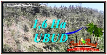 FOR SALE Beautiful PROPERTY 16,000 m2 LAND IN Ubud Tegalalang TJUB748