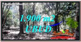 FOR SALE Magnificent 1,900 m2 LAND IN UBUD BALI TJUB755