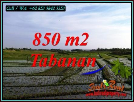 Affordable LAND FOR SALE IN TABANAN SELEMADEG TIMUR TJTB494