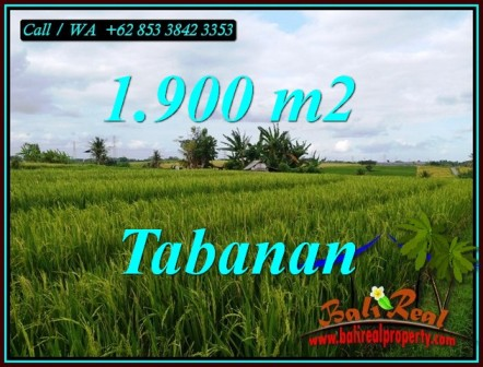 Magnificent PROPERTY 1,900 m2 LAND IN TABANAN FOR SALE TJTB495