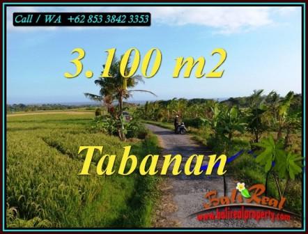 LAND IN TABANAN BALI FOR SALE TJTB496