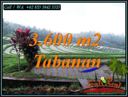Affordable TABANAN BALI LAND FOR SALE TJTB461