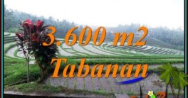 Exotic LAND SALE IN TABANAN BALI TJTB461