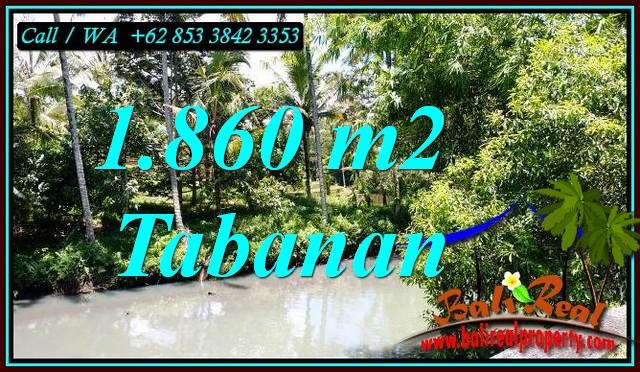 Beautiful 1,860 m2 LAND SALE IN SELEMADEG BALI TJTB467
