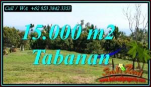 FOR SALE Exotic 15,000 m2 LAND IN SELEMADEG BARAT BALI TJTB472