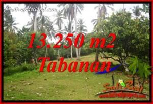 Exotic 13,250 m2 Land in Tabanan Bali for sale TJTB403