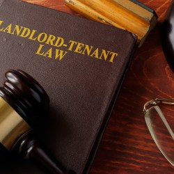 landlord Tenant Laws with Gravel on top