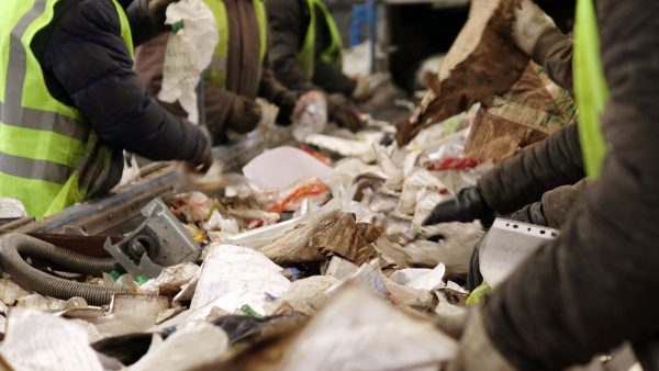 Wokers Performing Waste Management Audits