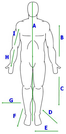 Human Body Quiz  Take or Create Human Body Quizzes