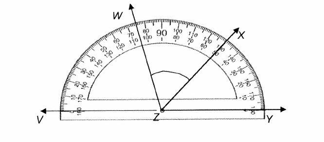 Angle 5 Length Degree 60 Triangle Cm 3 And