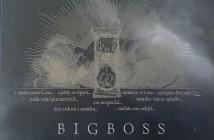 BigBoss Nez zemru