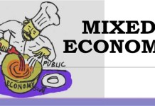 Mixed Economy