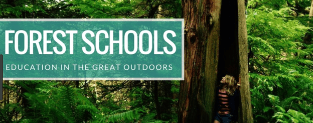 Pros and cons of forest schools - Pros an Cons