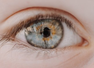 symphony Lens