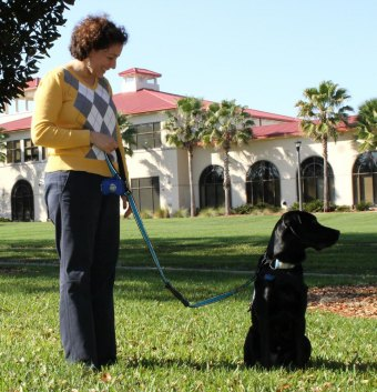 Dr. Waugh takes barker on a walk to get out of the office and to take a break.