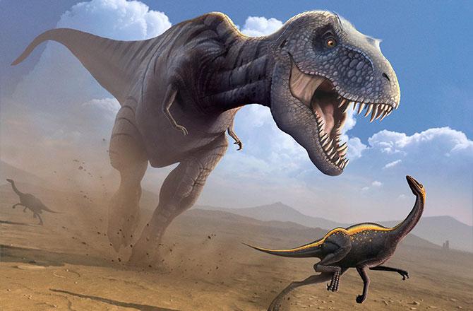 trex-was-predator-not-scavenger-130716-670x440