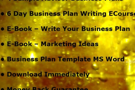 My Gift to YOU   Financial Advisor Marketing Plan Template   The     sample marketing planning doc ms word
