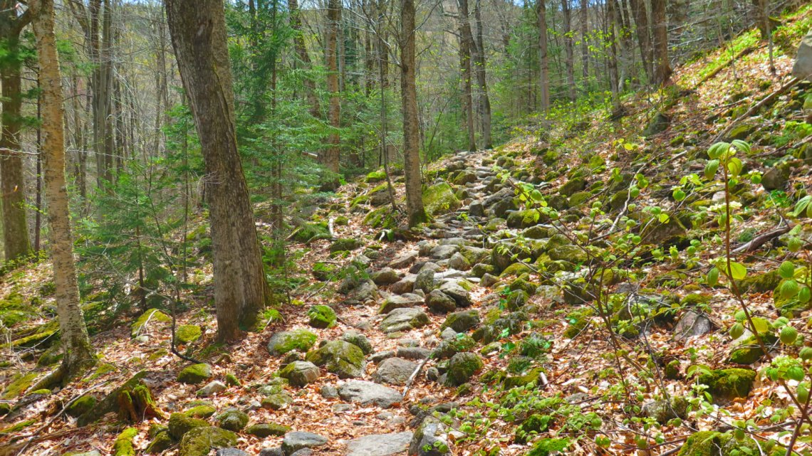 Tecumseh-Trail2-20190522