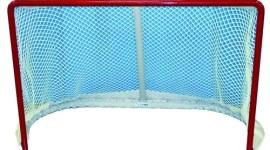 Buts de hockey sur glace