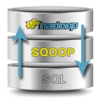 sqoop-import-export