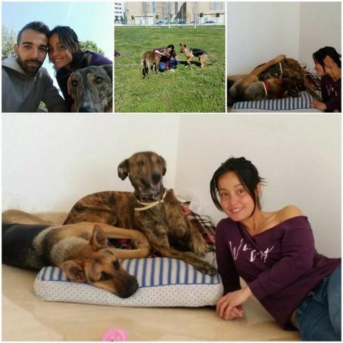 pepe adoptado con su familia