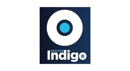 Logotipo Reporte Indigo