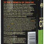 OPTIMUM NUTRITION Creatine non aromatisée 634 g