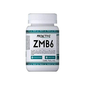 ProActive Worldwide Nutrition, ZMB6 90 capsels
