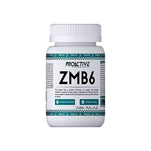 ProActive Worldwide Nutrition, ZMB6 90 capsels