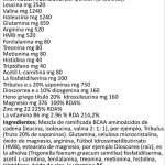 Acides Aminés Masse Musculaire BCAA Essentiel 2 BOX X 200 Comprimés 260 gr Avec: Glutamine Arginine HMB Acétyl Carnitine Tribulus Dioscorrea Foin Grecque ZMA Récupération Force Énergétique ALL ONE