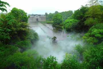 Amans neues Resort inmitten tausendjähriger Kampferbäume