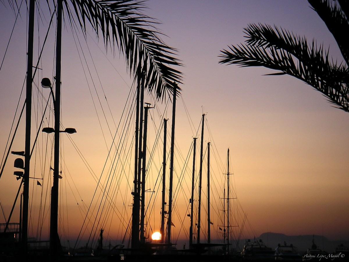 Sonnenaufgang im Hafen von Palma ©fincallorca
