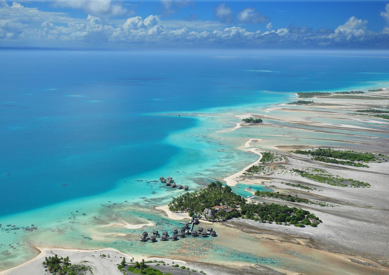 tahiti ferien urlaub tierwelt pflanzenwelt temperaturen wassertemperaturen meer sandstrand reise pflanzenwelt