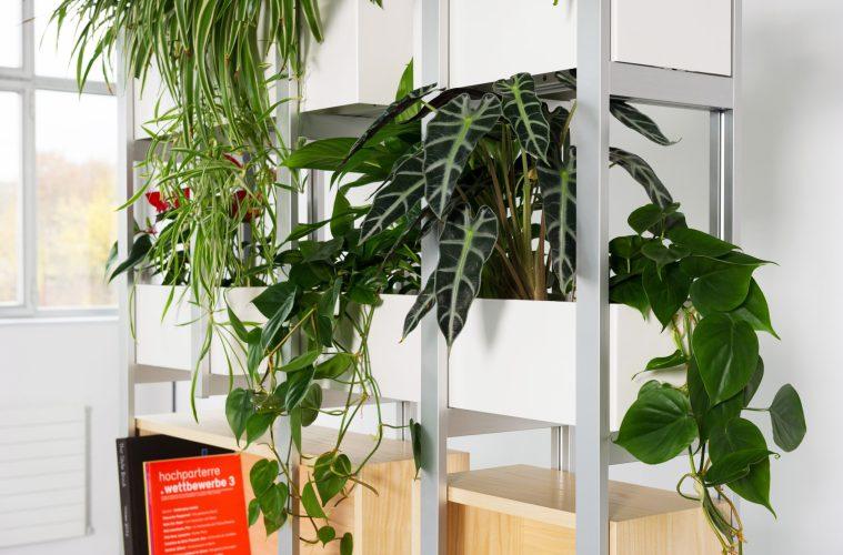 Hydroplant Green-Shelf-System