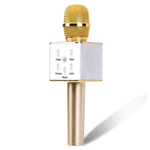 Wireless handheld Karaoke mic