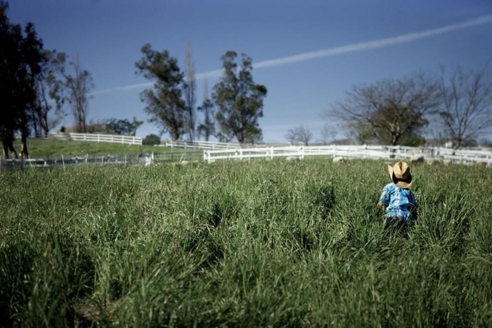 kid-in-field-1024x683