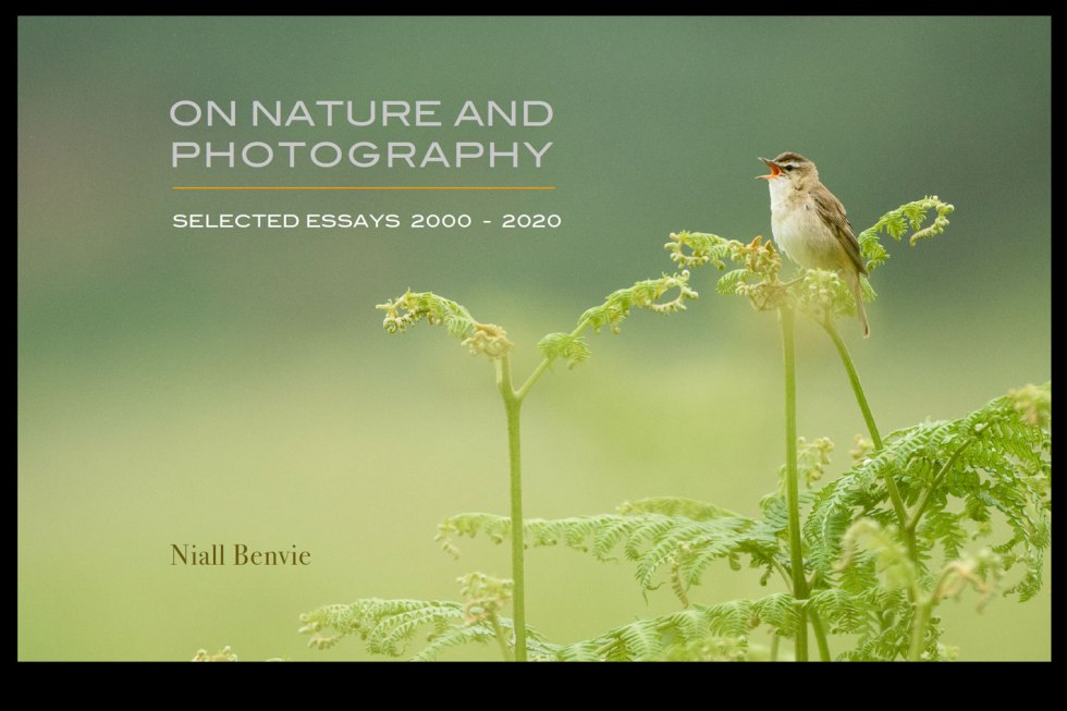 Niall Benvie's new eBook: a post-Covid -19 photography passport