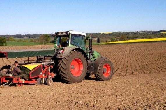 Maskinplantning med to rækket plantemaskine og GPS
