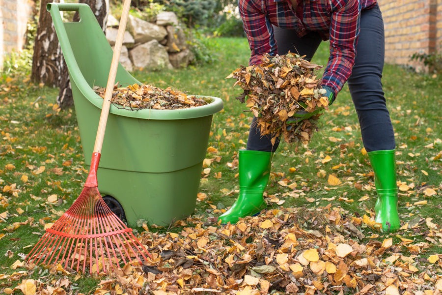 Getting Your Yard Winter Ready